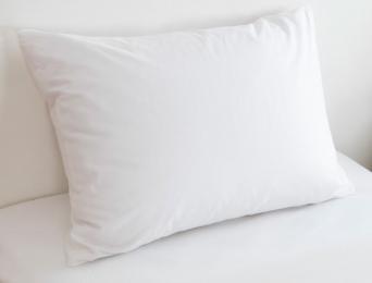 Taie d'oreiller 50x70 cm Blanc Coton Bio